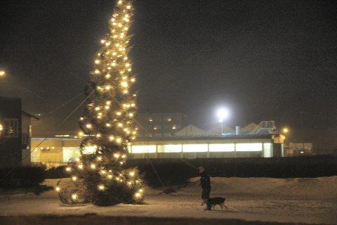 VENNSKAPSBY: De siste 35 årene har Drammens julegave til vennskapsbyen Stykkisholmur på Island har vært et juletre. Her står det trygt bardunert fast gjennom en stormfull desember for noen år siden - men nå er det slutt.