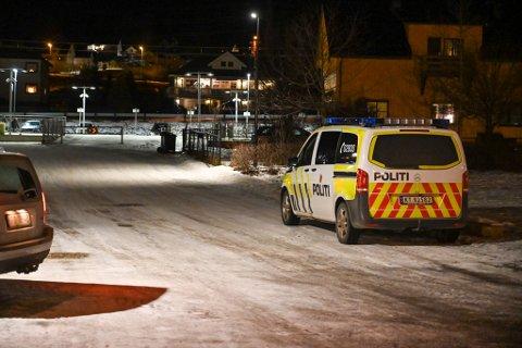 Det skal ha brent i flere søppelkasser i Vestfossen sentrum tirsdag kveld.