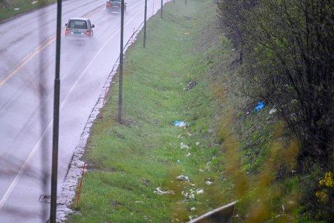 KJENNER TIL PROBLEMET: Statens Vegvesen er klar over søppelproblemet ved E134. Verst er det ved inn- og utkjøringen av Strømsåstunnelen.