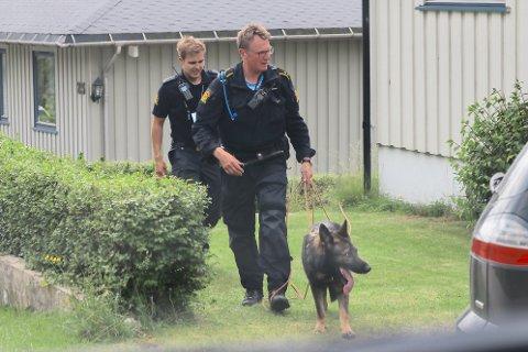 Én av de mistenkte innbruddstyvene ble pågrepet av en hundepatrulje i Sande.