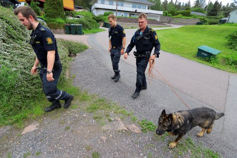 HUNDESØK: Politiet bruker både hunder og helikopter i søk etter to antatte innbruddstyver.