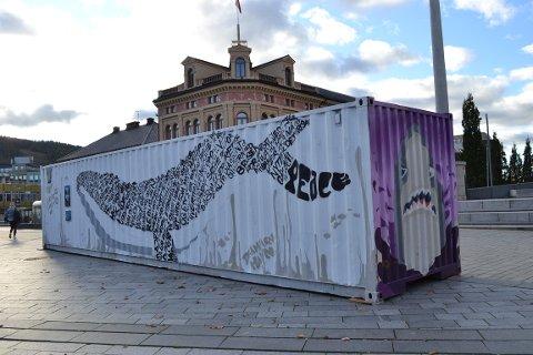 SYNLIG: Containeren er plassert på Strømsø torg.