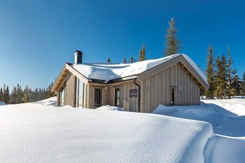 SELGES FOR NESTEN 4,6 MILLIONER: Hytta til Sondre Turvoll Fossli ble lagt ut for salg forrige uke. Den selges for nesten 4,6 millioner.