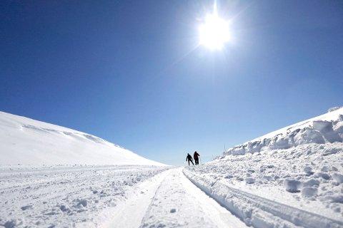 Så langt mener over halvparten at to klassisspor må prioriteres i skiløypene i Drammen.