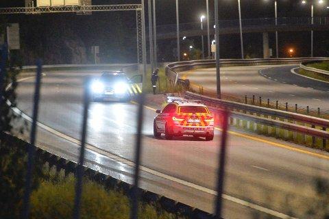 Politiet leter etter elgen midnatt natt til søndag.