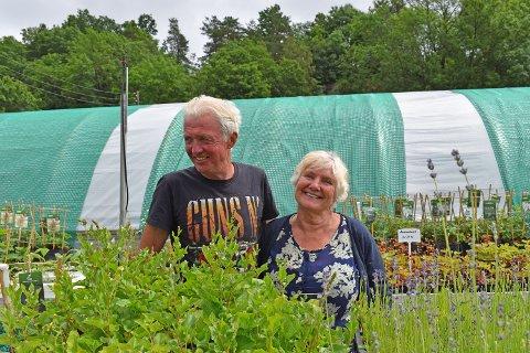 IVRER FOR VILLBLOMSTER: Øivind Kofstad og Laila Huseklepp har startet firmaet Hagemagi AS, som handler om å etablere blomsterenger basert på norske villflorplanter.