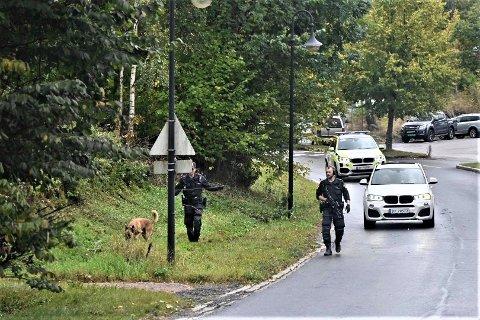 Væpnede styrker lette fredag etter en gjerningsperson i Åros. Lørdag er en mann i 40-årene pågrepet. Foto: Rune Folkedal