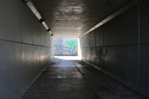 Eieren av YX/7-Eleven-stasjonen som ligger ved siden av undergangen mener den fremstår som mørk og utrygg.