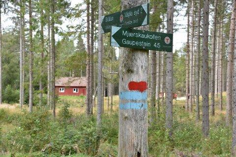 Kommune og Fylkesmann har bifalt byggingen av en ny gapahuk ved Bråtanstua i Ytre Enebakk.