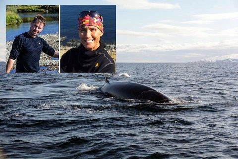 Sigbjørn Henriksen og Ann-Kristin Nordhus Samuelsen fikk seg en flott opplevelse på havet i går.