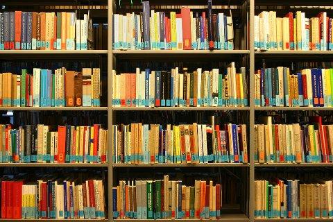 FORTGANG: OVK vil få i gang arbeidet med ny biblioteksjef.