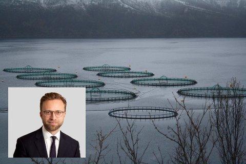UENIGHET: Sametinget og Lebesby kommune ble ikke enige om de nye områdene for akvakultur i kommunen.  Avgjørelsen havnet til slutt hos Kommunal- og moderniseringsminister Nikolai Astrup.