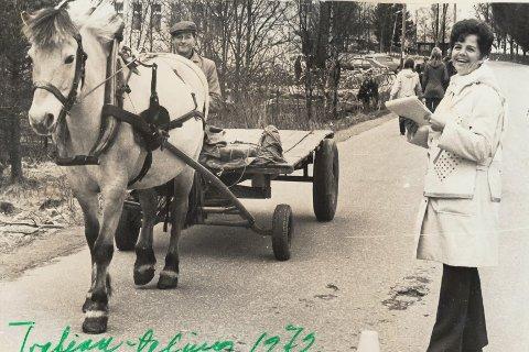 Bjørg Antonsen registrerer trafikktettleiken langs Havrenesvegen ein dag i 1972, og Oddvin med hesten var ein ekvipasje som måte reknast med i byen sitt trafikkbilde – sjølv om det i utgangspuntet var biltrafikken som var tenkt på.