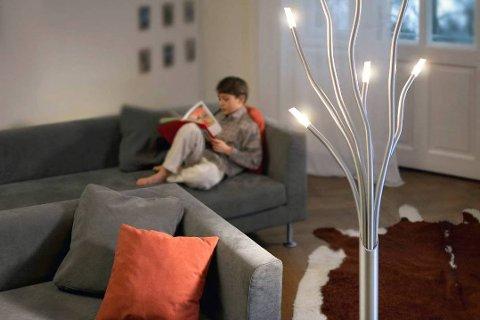 LYS OG VARME: Lys og varme i husa ser ut til å bli rimeleg også dei næraste åra.  Arkivfoto