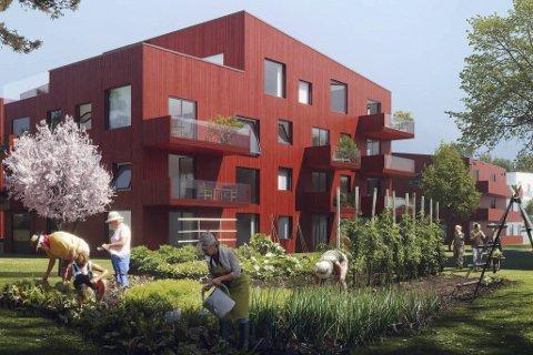 KRYMPAR STADIG: I det siste utkastet til planar for Gartnerihagen, er det ikkje lenger aktuelt å byggje korkje fem eller fire etasjar som på bildet, men derimot tre. Illustrasjon: TAG arkitekter AS/ SKANSKA