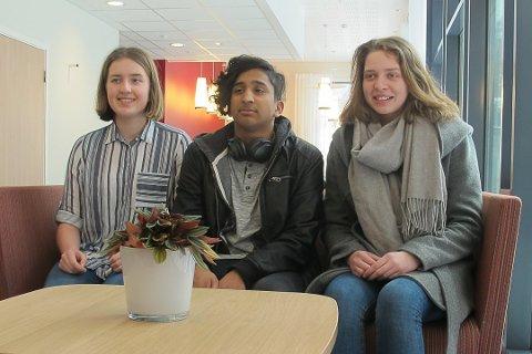 Ida Vågene, Tony Shyam Rajeswaran og Ragnhild Winther Bremnes er nokre av ungdommane som har engasjert seg i Realen.