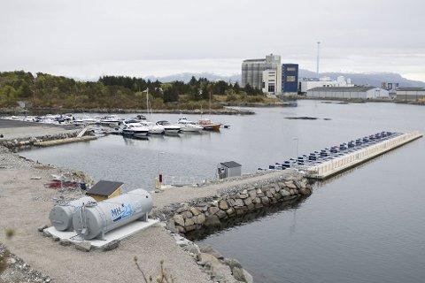 Tøffare enn venta: Byens nyaste båthamn har støtt på vermessige utfordringar. No kjem snart ein plan på høyring for å få utvida ein steinmolo som skal sikre anlegget betre. Foto: Tarjei Langeland
