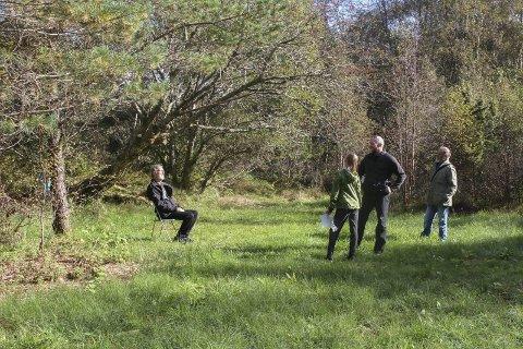Magne Hovland prøver å halde denne enga på Sørstrand open ved å ta slåtten. Han nyt freden i det grøne rommet og har to klappstolar hengande klare i eit tre. Foto Liv standal