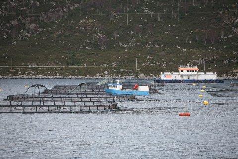 Fjord Seafood - og seinare Marine Harvest sitt matfiskanlegg i ved Gulestø i Bremanger.