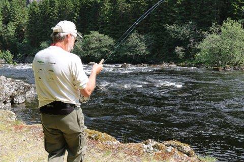 TIDLEG STOGG: På grunn av kritisk dårlege fangstrapportar, kuttar no Miljødirektoratet laksefiskesesongen i mange elvar i fylket med to veker. Her frå laksefiske i Osen-vassdraget i Flora.
