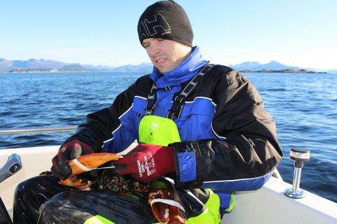 Jan-Tore Aldeholm har vore hummarfiskar i snart 20 år. I heile denne perioden har hummarfisket gått nedover, seier han.