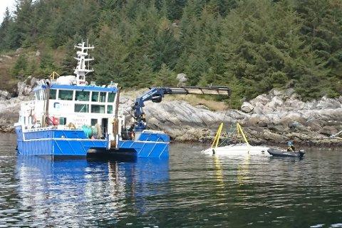 DØDSULYKKE: Ei kvinne mista livet då ein båt køyrde på land på øya Selja i Selje kommune i mai 2018. Foto: Redningsselskapet