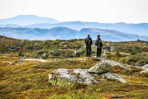 HAUST: Utsikt fra Eggedalsfjellet mot Numedalsfjella i Buskerud.