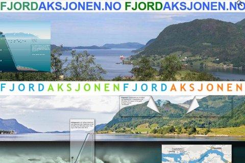 Kven meiner kva? Og kva aksjon kan redde fjorden?