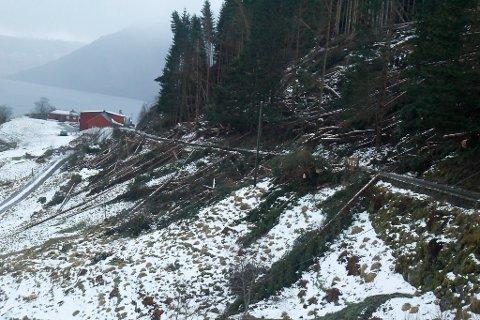 SFE bur seg på ein situasjon som då uveret Dagmar herja i romjula 2011. Bildet er frå Kandalen i Gloppen.