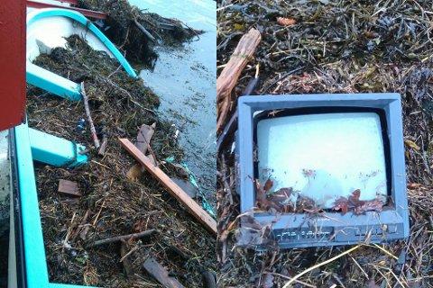 Ein båt, som ser ut til å vere heilt i orden sjølv om den var full i plankar og rus, og eit gammalt fjernsyn var noko av det Synnøve Rivedal fall i fjøra ved Dalsfjorden laurdag.