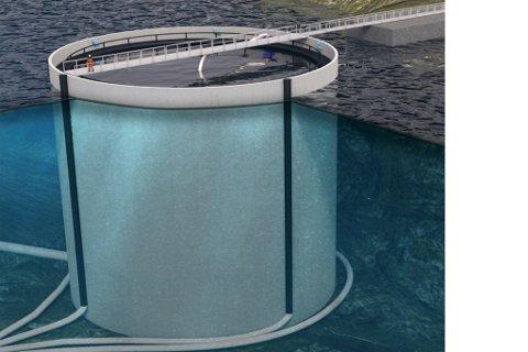 SØKJER KONSESJON: Osland Havbruk meiner denne betongkonstruksjonen, som dei kallar  «Bunnsolid», vil vere rømningssikker og hindre mykje av lakselus-problemet.