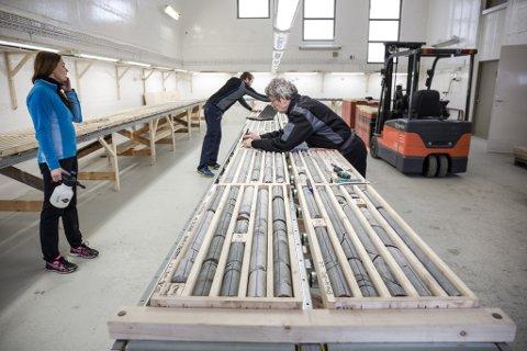 23.000 METER: Metervis med borekjernar utgjer materialet for analysane som gjer at Nordic Mining no oppjusterer mineralressursen med fem prosent. Bildet er frå tidlegare prøvetaking.