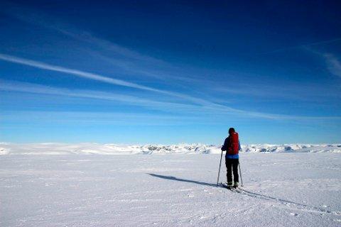 Vi er på høgste punktet 1636 m.o.h. Her er utsikta formidabel. Vi ser innover mot fjellrekkja        Hurrungane inst i Sogn. Den høgste toppen er Store Skagastølstind.