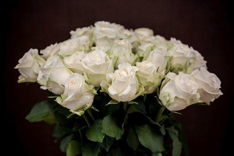 Illustrasjonsbilde. kvit rose blome blomst bukett gravferd minne krans