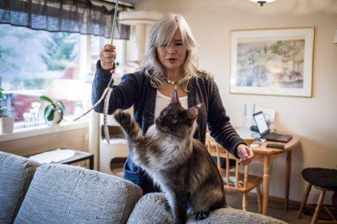 HEKTA: Sissel Karin Hals skulle eigentleg berre ha seg ein katt for kos, men så blei ho overtalt til å ta Maestro med på utstilling. No har ho fem kattar og er fullt oppteken med kattelivet. Her med nyaste tilskot X-en. – Årlege utgifter til mat, sand, forsikring, vaksiner og så vidare er vel på linje med å ha flugefiske som hobby, anslår ho.