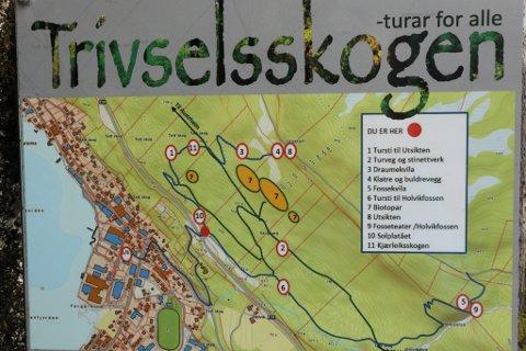 NETTVERK AV STIAR: I skogen på Sandane har du fleire moglegheitar for turar og opplevelsar.