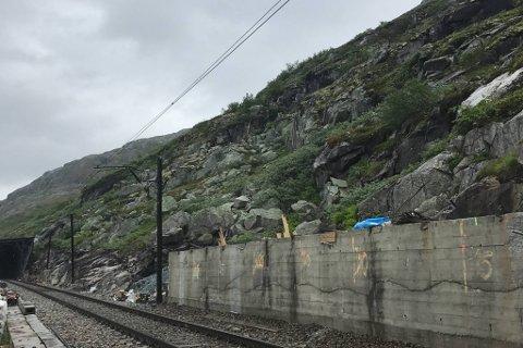ULYKKESSTADEN: 28- åringen jobba ved denne staden då ulykka skjedde to km vest for togstasjonen på Hallingskeid i Ulvik kommune.