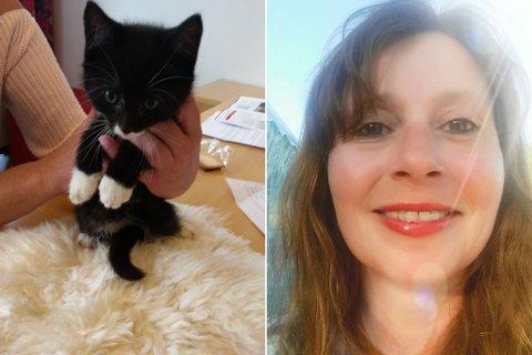 PÅ KONTORET: Margunn Rygg tok vare på kattungen på kontoret sitt, etter at ho fann den ved Elvetorget. No er katten trygt heime hjå matmor.