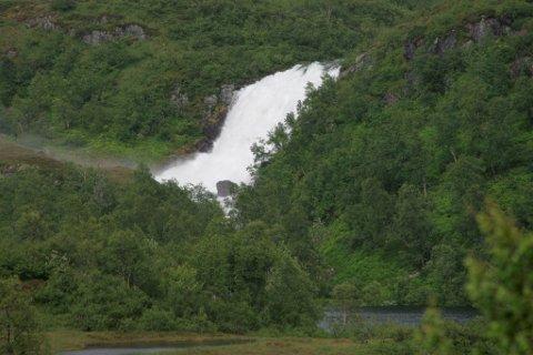 Fossen Kviteførkle i Gaular lever opp til namnet sitt.