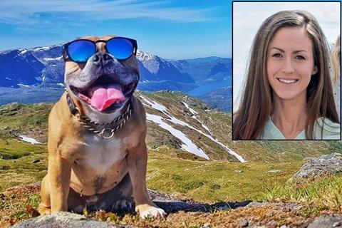 HUND ETTER FJELLTURAR: Oda Hjelmeland og hennar to poseringsvillige hundar på tur i vakre landskap, oppsummerer Instagram-profilen Hikingbullies. Ho er ein av to som Firda har sendt vidare i konkurransen om å bli Norges beste på Instagram.