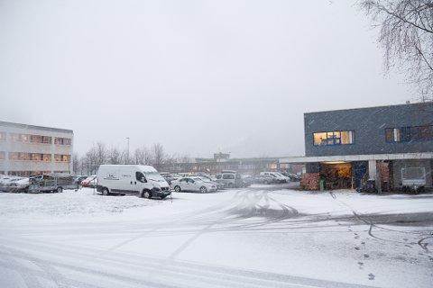 FØRSTE SNØFALL: Snøen som kom tysdag formiddag er våt, men legg seg på bakken. Der kan han bli liggande ei stund.