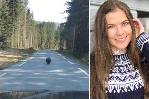 Miriam Berg Hovda (30) traff på eit nokoe uvanleg dyr å møte langs vegen tysdag ettermiddag.