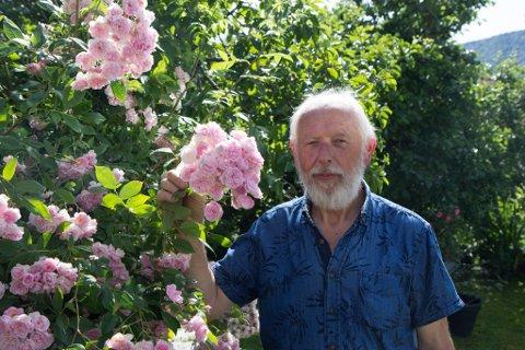 YDREROSE: – Dette er ei av favorittrosene mine. Eit år vart den kåra til årets rose i Sverige og eg måtte sende bilde, fortel Matias Hukseth.