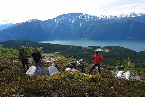 FORSKAR: Frå fjord til fjell samlar forsvararane data på blåbær og forsking. Dei gjer også eksperiment i felt, til dømes med varmebur som på bilete. I bakgrunnen ser ein Sogndal lufthamn, Sognefjorden og fjellet Bleia.