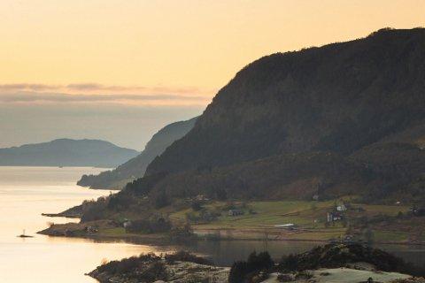 VEVRING: Forskarar har testa brosme, torsk, sjøkreps og blåskjel, artar som typisk samlar opp ulike stoff, for forureining i Førdefjorden. Ingen av dyra som vart undersøkte inneheldt bly eller kadmium over den fastsette grenseverdien for sjømat.