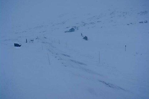 TYINOSEN: Fv53 Tyin - Årdal er ein av vegane som er stengde. Slik såg det ut søndag kl 11 på Tyinosen, 1081 meter over havet.