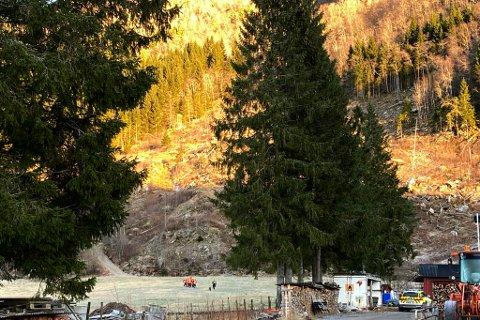 OMKOM: Like etter klokka 12.00 laurdag vart den danske turgåaren henta ned frå fjellet.
