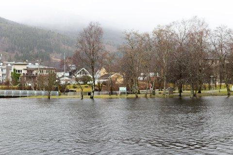 STORMFLOD: Meteorolgane varslar ekstra høg flod fredag føremiddag. Bildet er frå stormfloda i samband med uvêret Elsa i februar i fjor.