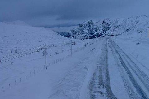 KOLONNE: Slik ser det ut over Hemsedalsfjellet søndag morgon. Her er det kolonnekøyring.