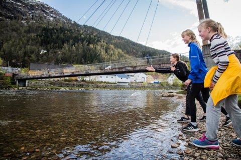 MATAR FUGLANE: Othilie Bosdal Thorsen (11), Lena Midtbø Norbom (11) og Oda Gjervik Hagenes (11) var ute på sykkeltur og stoppa ved Jølstra for å mate fuglane. – Vi pleier ikkje vere her så ofte, men i dag var det endeleg fint vêr, seier Lena.